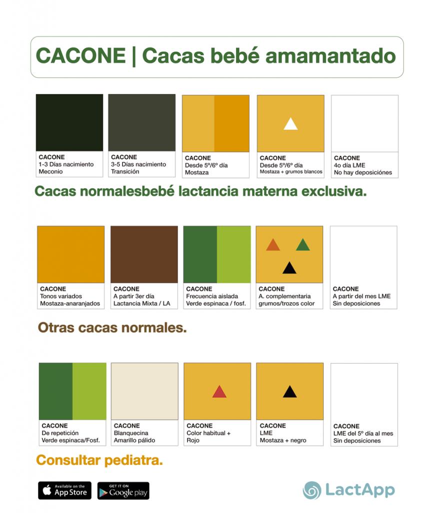 Colores Bebe.Cacas Del Bebe Amamantado Cacone La Paleta De Colores